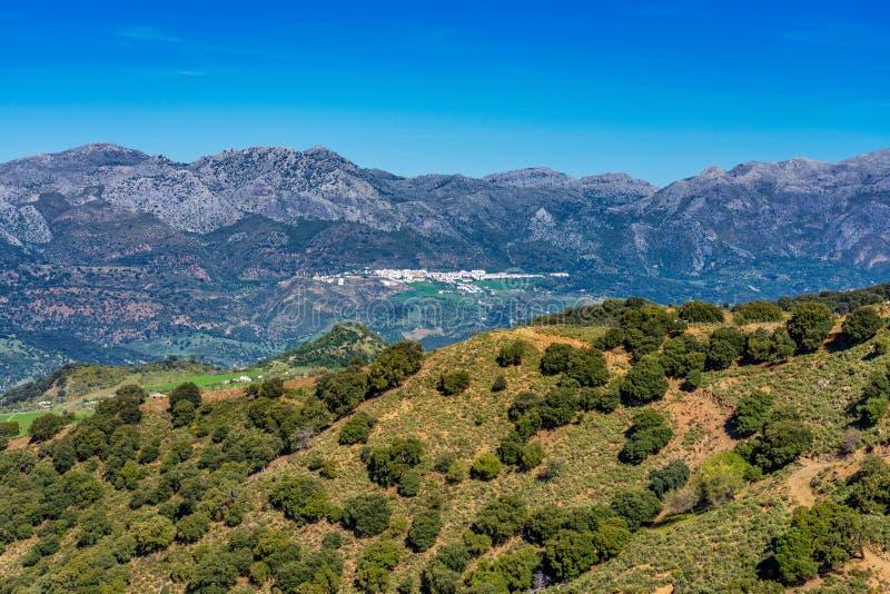 Krajobraz sierra de Grazalema naturalny park, Cadiz prowincja, Andalusia, Hiszpania obraz royalty free
