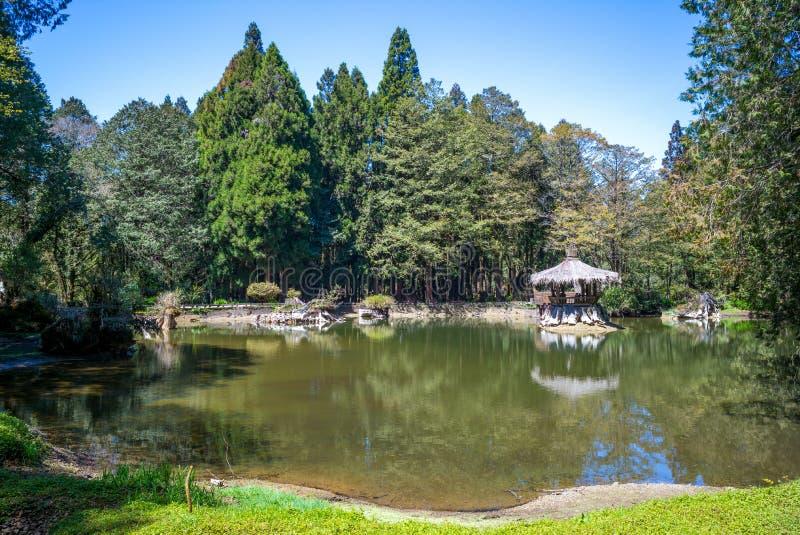 Krajobraz siostrzany staw w alishan, Chiayi zdjęcia stock