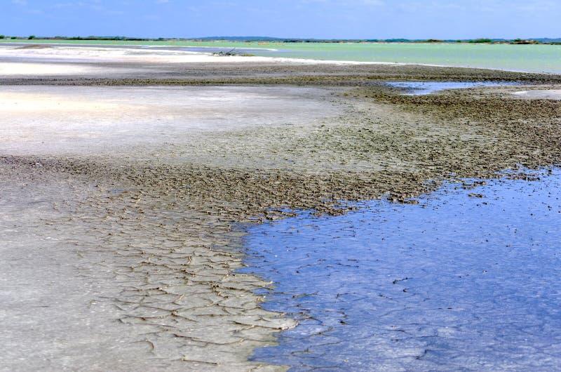 Krajobraz Solankowy teren w Rio Lagartos zdjęcia royalty free