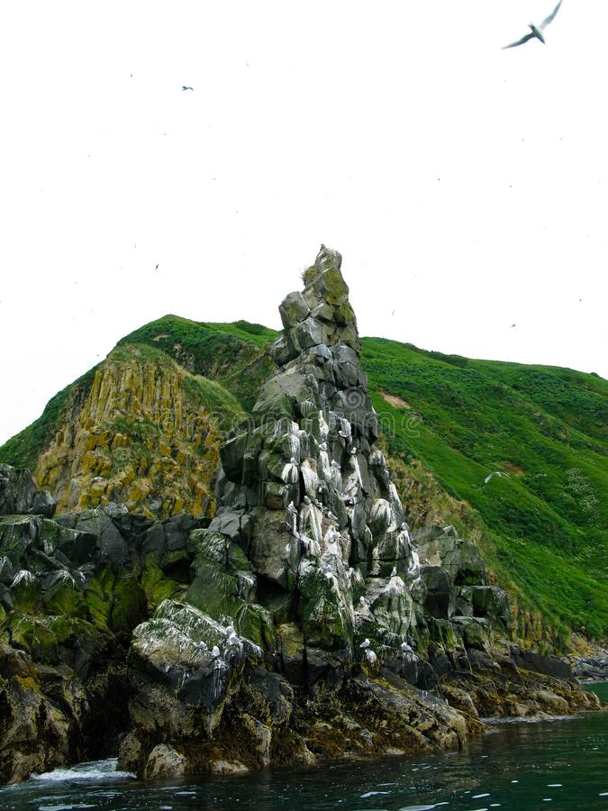 Krajobraz Starichkov wyspa przy Avachinskaya zatoką, Kamchatka, Rosja obraz stock