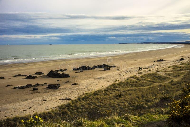 Krajobraz szkocki St Cyrus Beach, Montrose, Aberdeenshire, Szkocja, Zjednoczone Królestwo zdjęcia stock