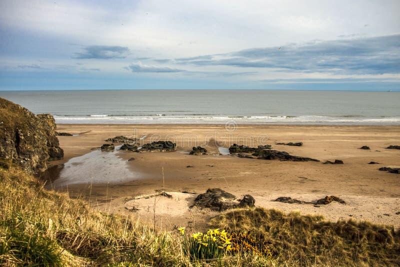 Krajobraz szkocki St Cyrus Beach, Montrose, Aberdeenshire, Szkocja, Zjednoczone Królestwo fotografia stock