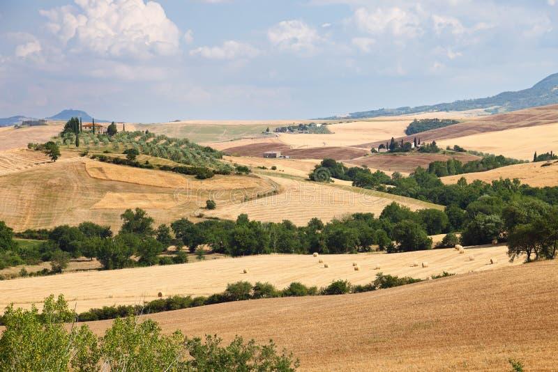 Krajobraz Tuscany blisko Siena w Włochy zdjęcia stock