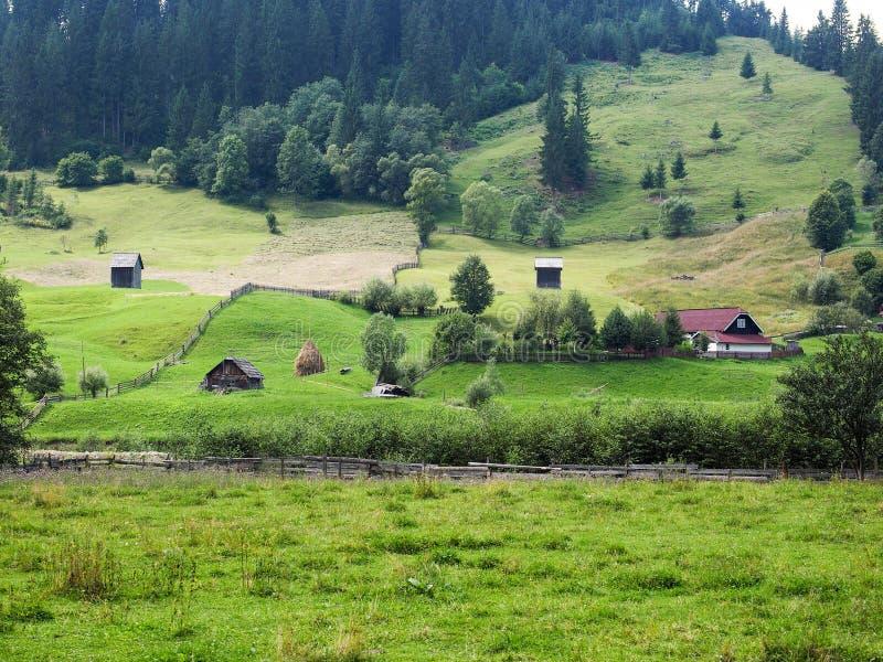 Krajobraz w Bucovina zdjęcia royalty free