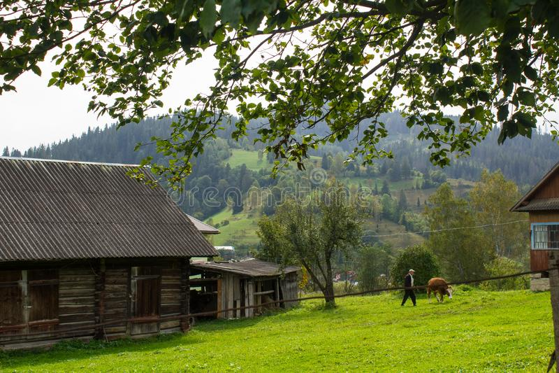 Krajobraz w Carpathians w auturmn zdjęcia stock