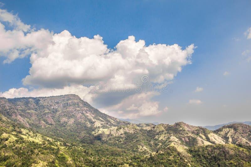 Krajobraz w dniu obraz royalty free