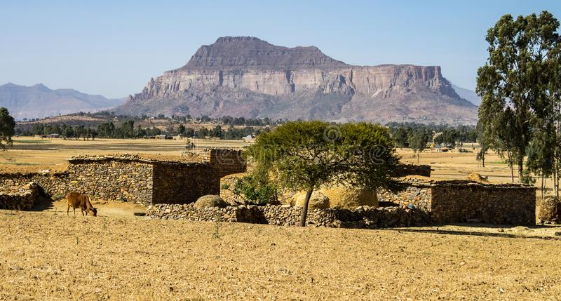 Krajobraz w Gheralta w Tigray, P??nocny Etiopia obraz royalty free