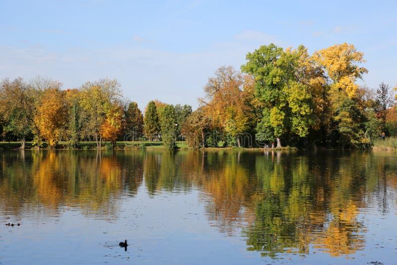 Krajobraz w jesieni z kolorowymi drzewami i jeziorem fotografia royalty free