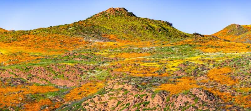 Krajobraz w piechura jarze podczas superbloom, Kalifornia maczki zakrywa doliny halne granie i, Jeziorny Elsinore, obraz stock