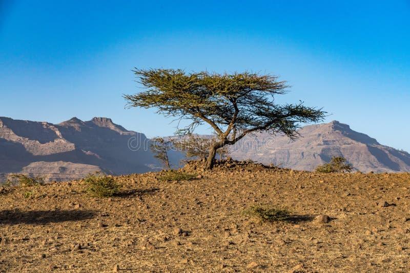 Krajobraz w ?redniog?rzach Lalibela, Etiopia zdjęcia stock