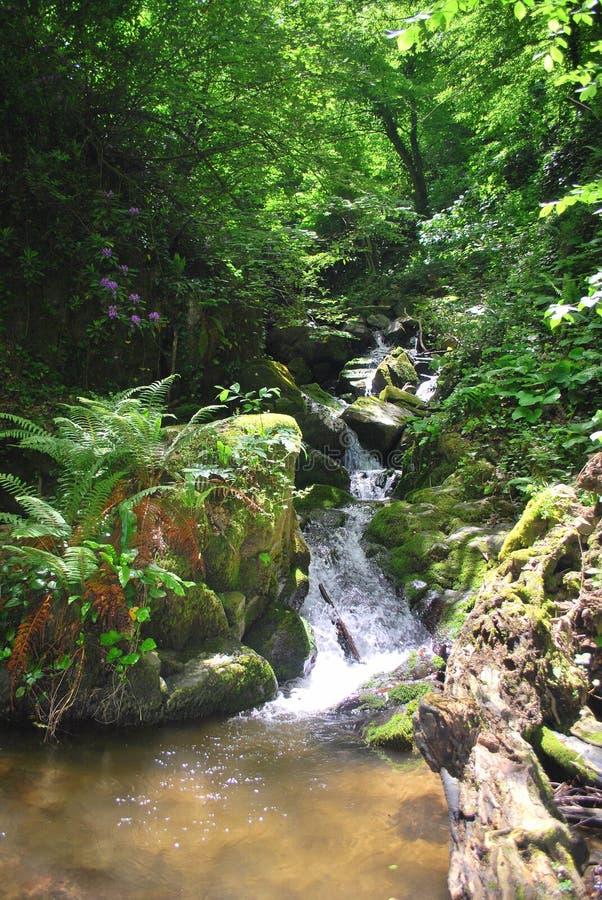 Krajobraz waterfal w Turcja zdjęcia stock
