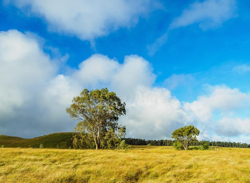 Krajobraz Wielkanocna wyspa, Chile zdjęcie stock