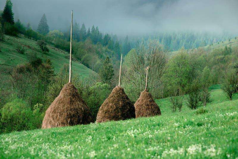 Krajobraz wielkie góry w wiośnie fotografia royalty free