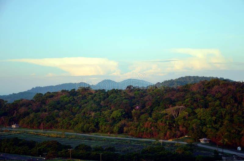 Krajobraz wokoło Cocoli kędziorków, Panamski kanał obrazy stock