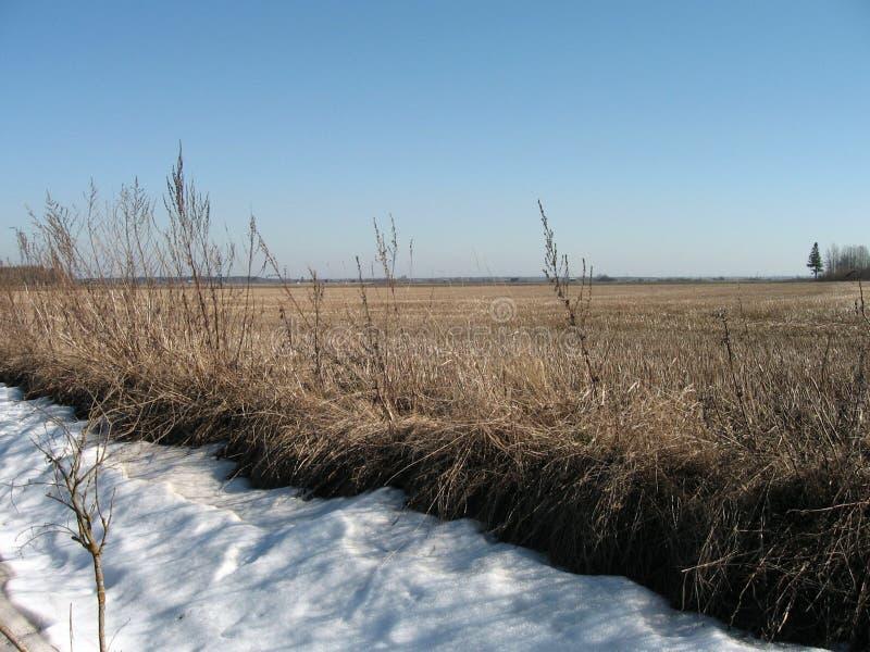 krajobraz wsi obraz stock