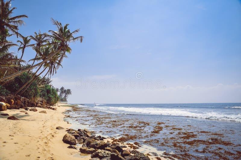 Krajobraz, wybrzeże ocean indyjski zdjęcie royalty free