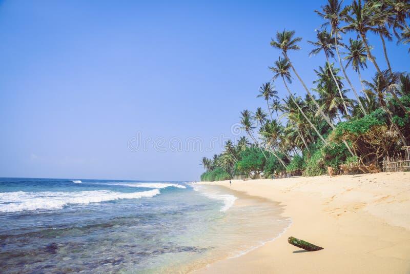 Krajobraz, wybrzeże ocean indyjski zdjęcie stock
