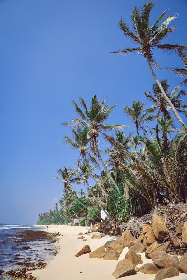 Krajobraz, wybrzeże ocean indyjski zdjęcia stock