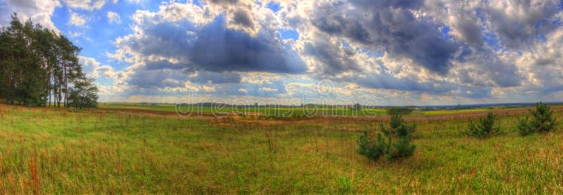 Krajobraz z łąką i drzewa pod chmurnym niebem obraz stock