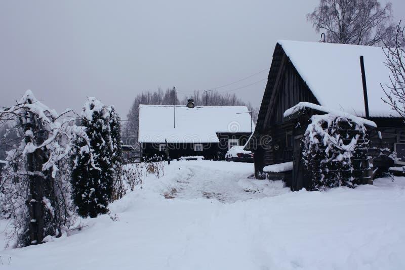 Krajobraz z śniegiem zakrywał drzewa i starego wiejskiego dom w Latvia, Wschodni Europa obraz stock