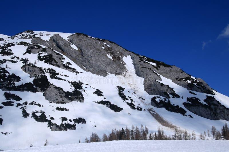 Krajobraz z górą, Austria zdjęcie royalty free