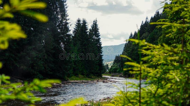 Krajobraz z g?rami, lasem i rzek? w przodzie, pi?kna sceneria zdjęcie stock