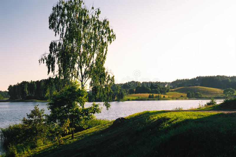 Krajobraz z jeziora i brzozy drzewem fotografia stock
