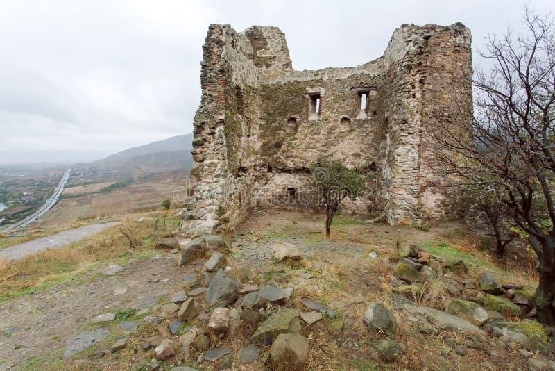 Krajobraz z małymi drzewami na terenie stare ruiny, antyczny forteca z ściana z cegieł fotografia royalty free