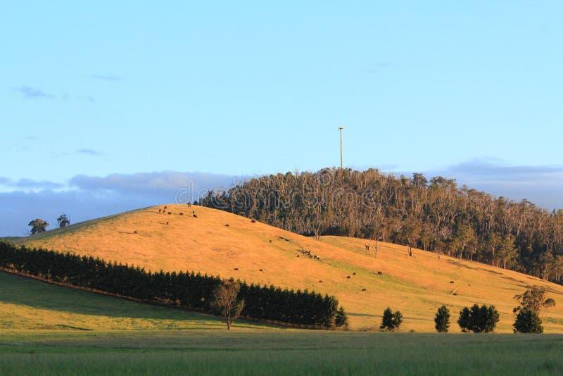 Krajobraz z niebieskim niebem i górami zdjęcie stock