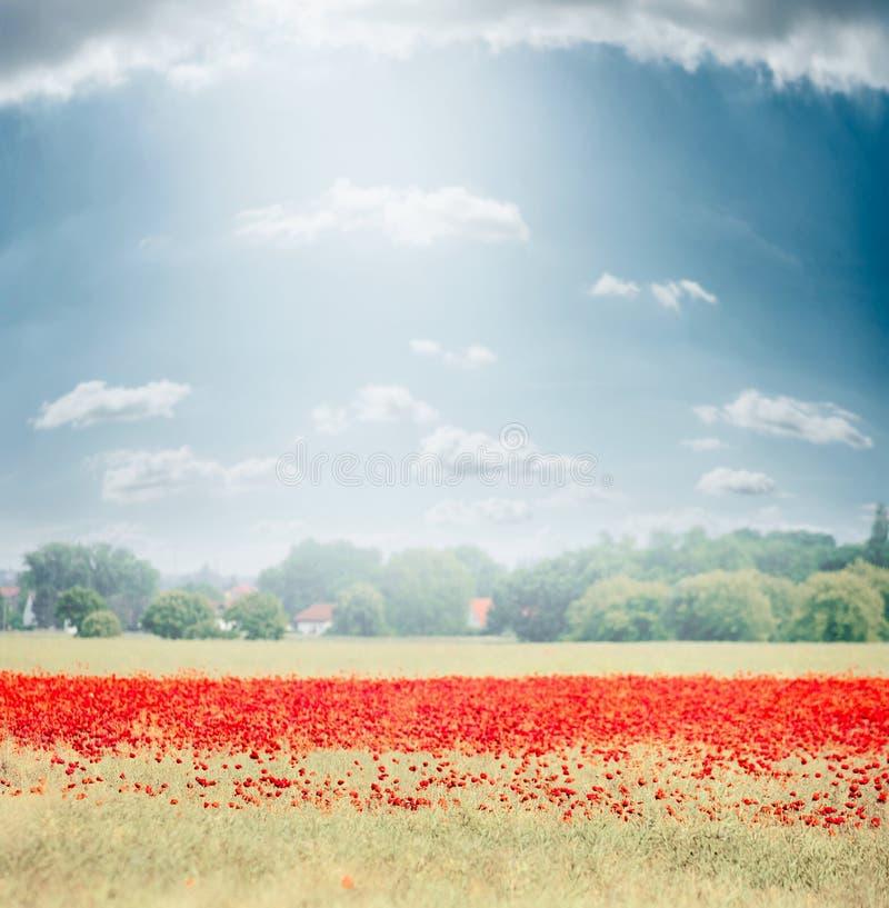 Krajobraz z polem maczków kwitnąć, wsią w tle i pięknym niebem, natura plenerowa obrazy stock