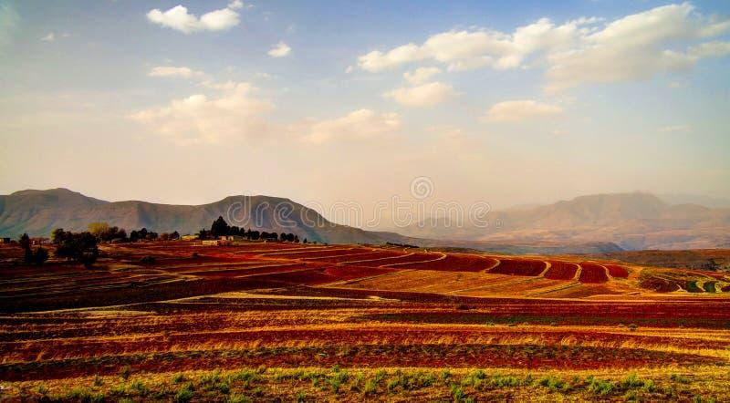 Krajobraz z rolnictwa polem wokoło Malealea, Lesotho fotografia royalty free