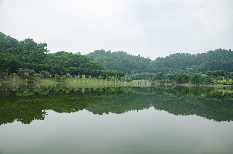Krajobraz z rzek? i drzewami zdjęcia royalty free