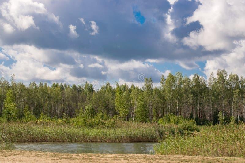Krajobraz z rzek? i lasem na horyzoncie cloud cumulusu niebo Latvian natura drzewo pola fotografia stock