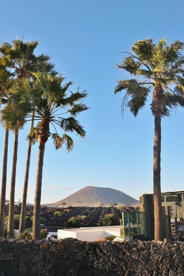 Krajobraz z wulkanem na Lanzarote, wyspy kanaryjska fotografia stock