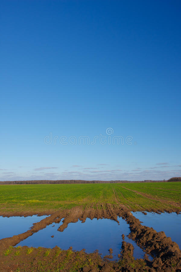 Krajobraz z zalewający pola zdjęcia royalty free