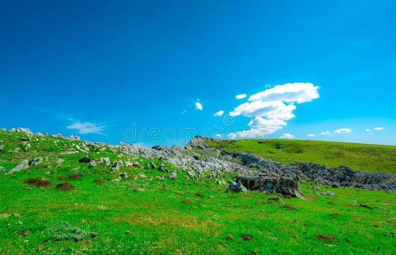 Krajobraz zielona trawa i skały wzgórze w wiośnie z pięknym niebieskim niebem i bielem chmurnieje Wieś lub wiejski widok Natura zdjęcia royalty free