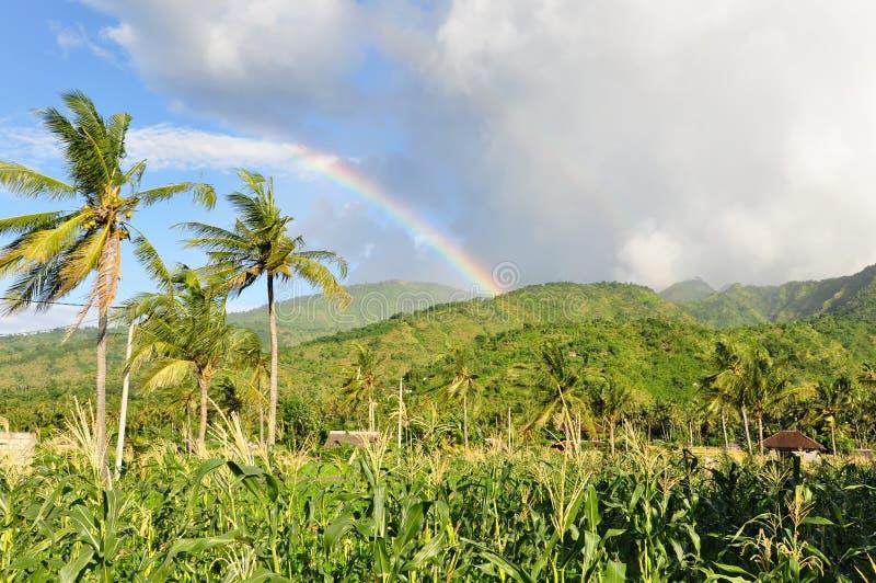 krajobrazowa Bali tęcza zdjęcie royalty free