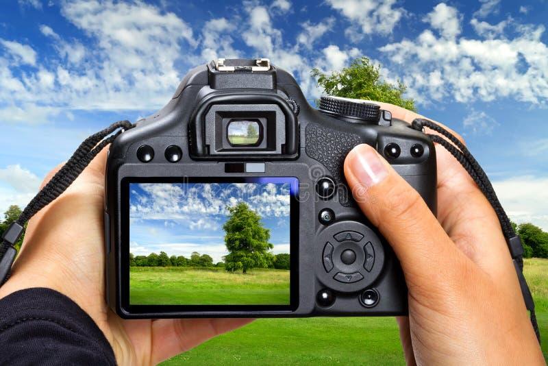 krajobrazowa fotografia zdjęcia stock