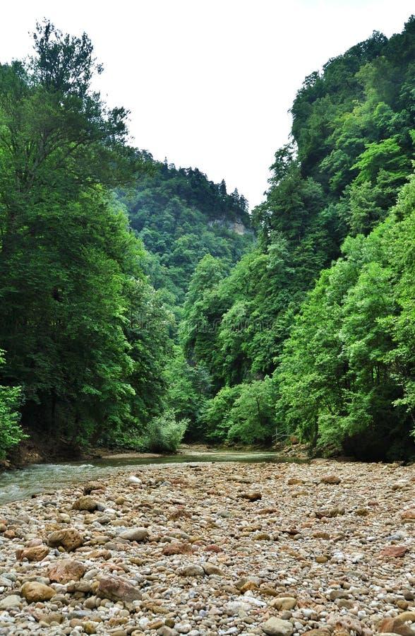 Krajobrazowa halna rzeka z dużymi skałami na brzeg zdjęcie royalty free