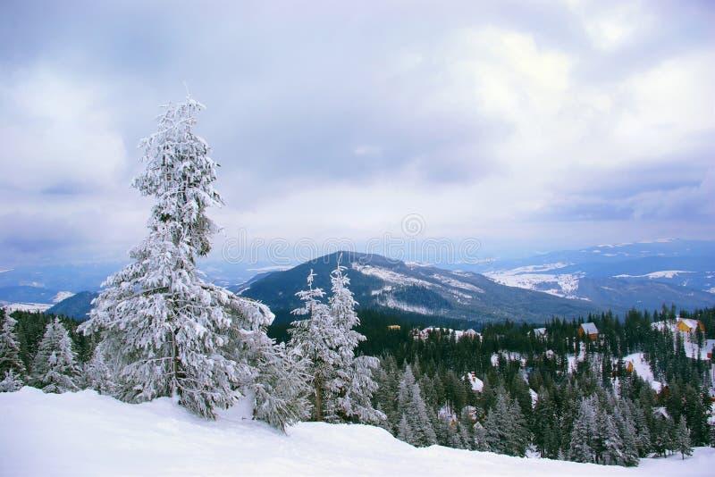 krajobrazowa halna zima zdjęcie stock