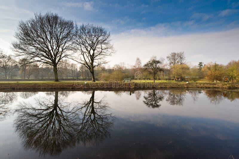krajobrazowa Holender zima obrazy royalty free