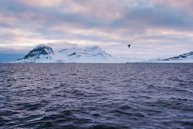 Krajobrazowa natura góry Spitsbergen Longyearbyen Svalbard arktycznego oceanu zimy dnia biegunowy zmierzch obrazy royalty free