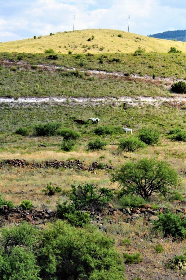 Krajobrazowa sceneria między Sedona i Jerome, Maricopa okręg administracyjny, Arizona, Stany Zjednoczone obrazy stock