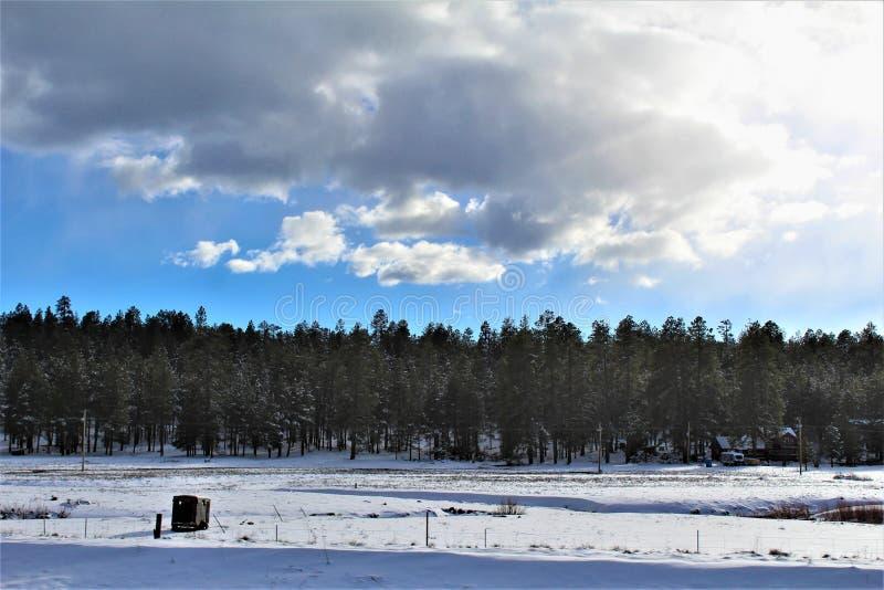 Krajobrazowa sceneria, MiÄ™dzystanowi 17, flagstenga Phoenix, Arizona, Stany Zjednoczone obrazy royalty free