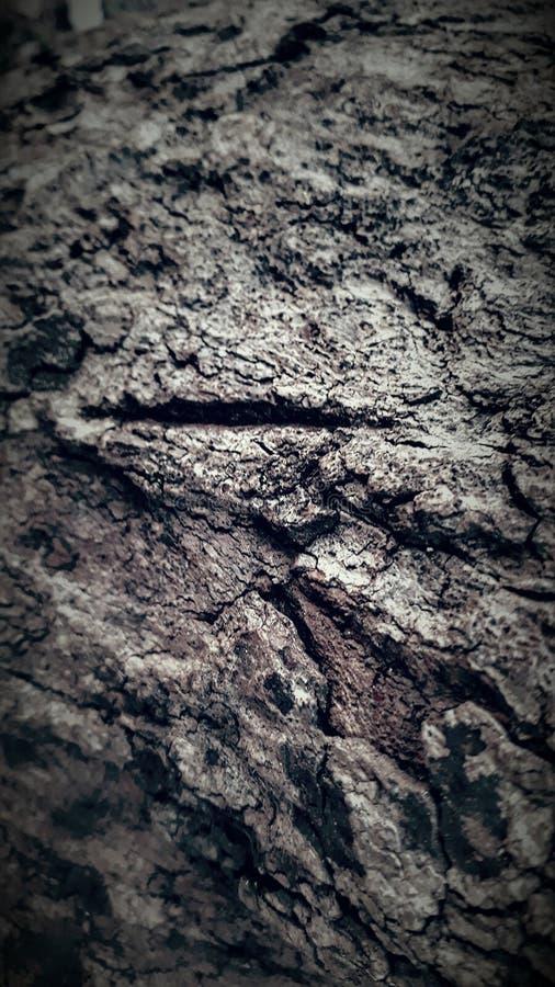 Krajobrazowa tło tekstura obrazy royalty free