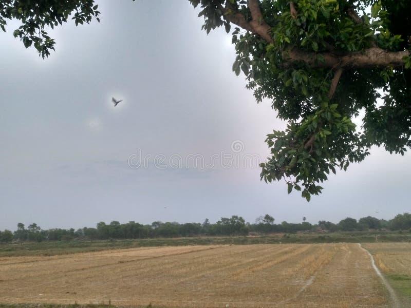Krajobrazowa widok wioska zdjęcia stock