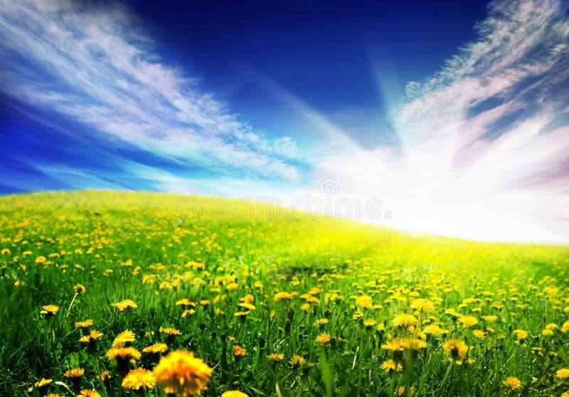 krajobrazowa wiosna zdjęcia stock