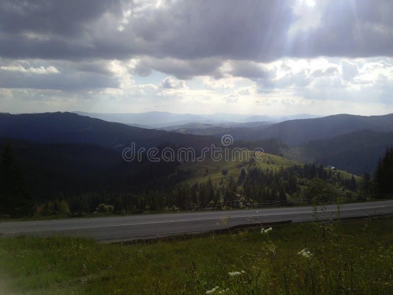 Krajobrazowe lasowe góry fotografia stock