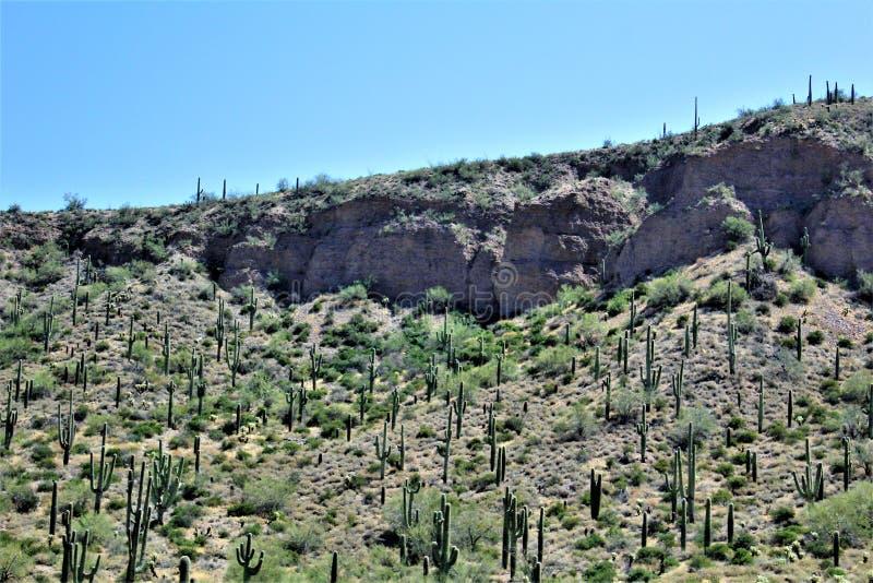 Krajobrazowe sceneria mesy Sedona, Maricopa okręg administracyjny, Arizona, Stany Zjednoczone fotografia royalty free