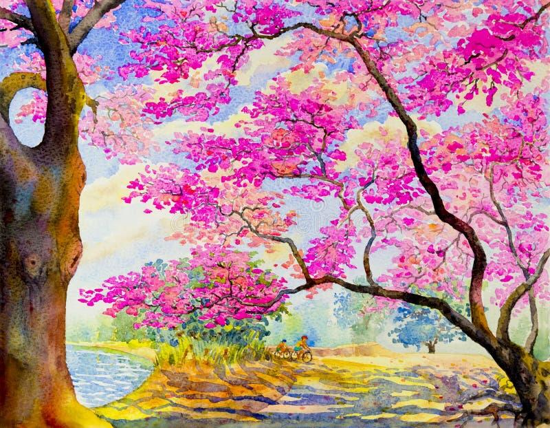 Krajobrazowego obrazu menchii kolor dzika himalajska wiśnia z cyklistą ilustracja wektor